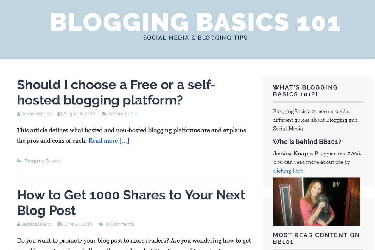 www.bloggingbasics101.com